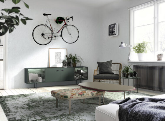 salon-bicicleta